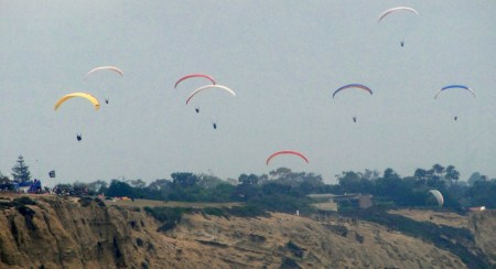 Lots and lots of paragliders flew in and out of view - Torrey Pines has a well known paragliding school