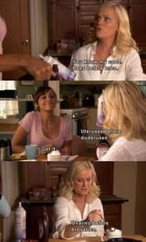 Parks and Rec - Leslie & Ann friendship, hoes before bros