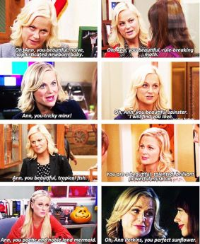 Parks and Rec - Leslie's Ann compliments